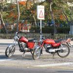 MZ ETS 150 und Suzuki
