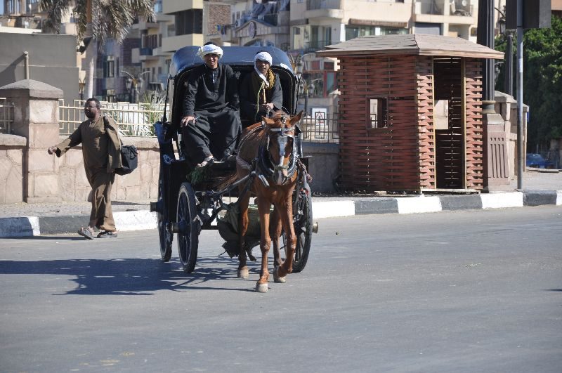 Pferdekutsche in Luxor