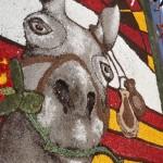 bluetenfest noto katalonischer Esel